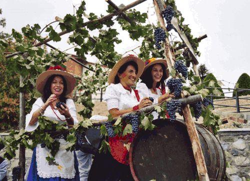 Vagliagli wine festival