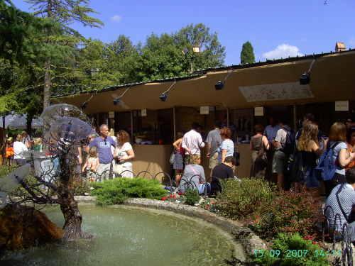 Panzano wine festival