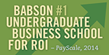 PayScale ROI Ranking