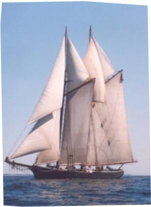 fukk sail
