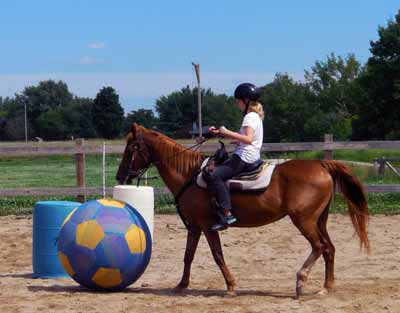Horse soccer