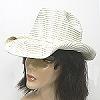 Glittery cowboy hat
