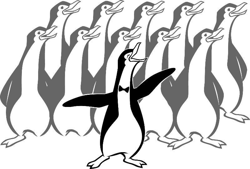 KDB Penguin Choir