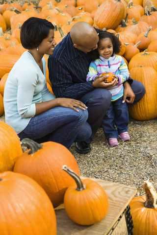 Piicking Pumpkins