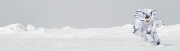 Arctic dancing