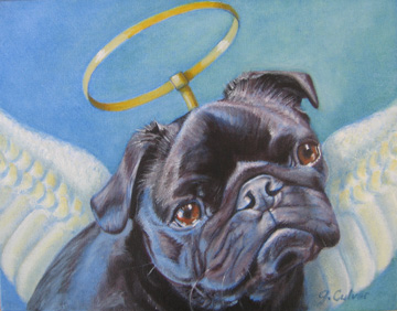 Pug with angel wings