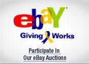 2009 NEW 4 Ways - eBay