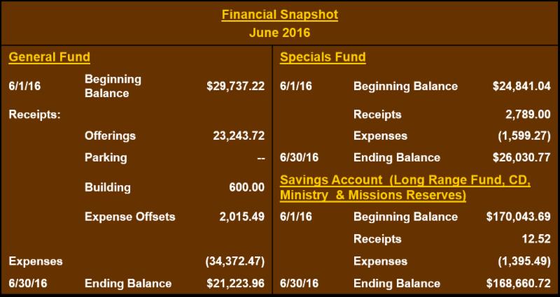 June 2016 financial snapshot