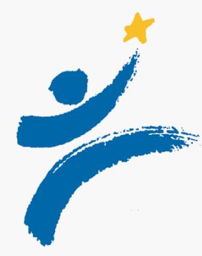 CFE 2011 logo