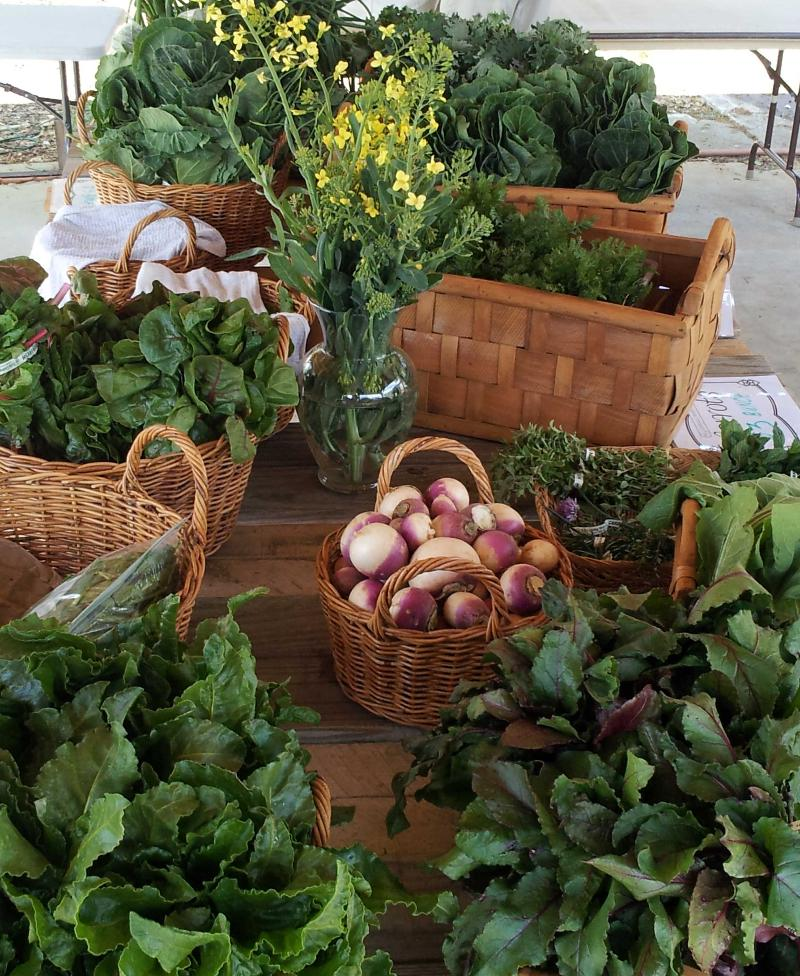 Table of Greens