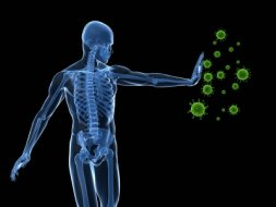 exercise and immune system