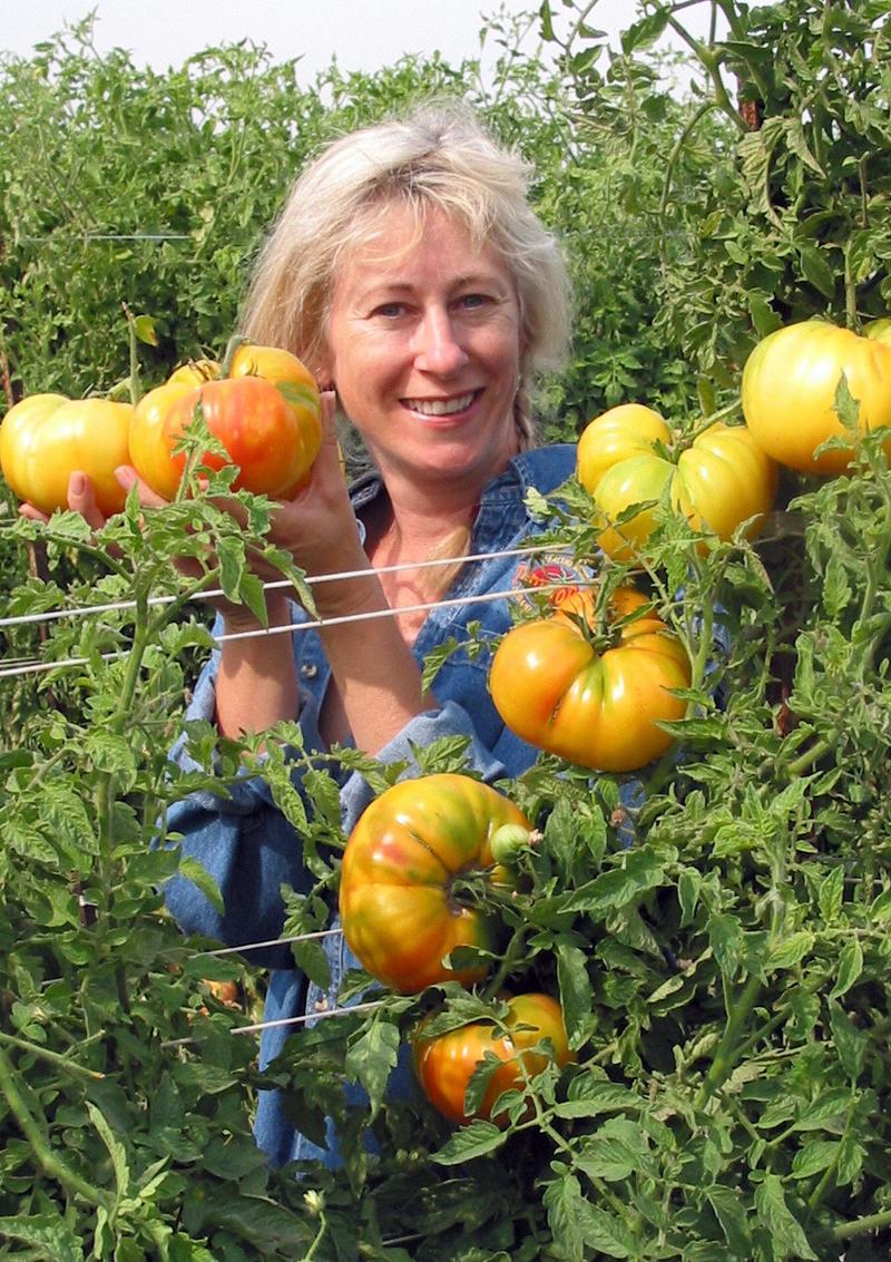 Dagma Lacey with Hawaiiian Pineapple Heirloom Tomatoes!