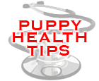 pup.health.tips.