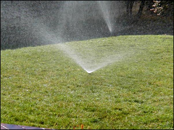Misting Sprinklers