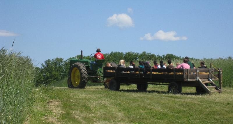 hayride summer