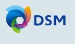 NL_DSMlogo