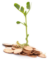 sprouting coins - microloans
