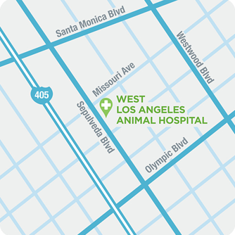 Directions to West Los Angeles Animal Hospital