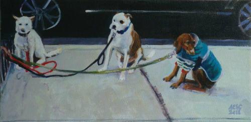 Chelsea Dogs