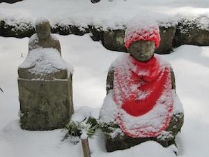 Buddha Snow