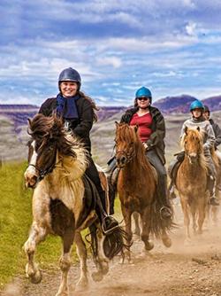 Iceland Horse Trek