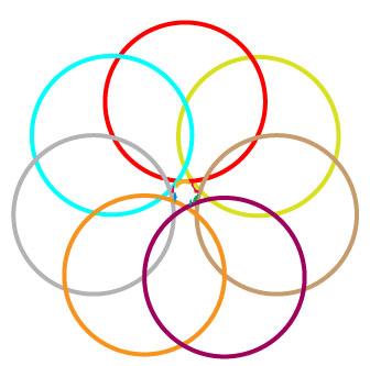 LLN-color-logo