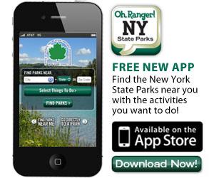 Ny web App
