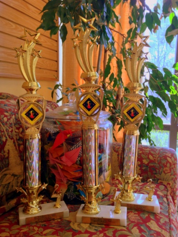 Regional Odyssey of the Mind Trophies