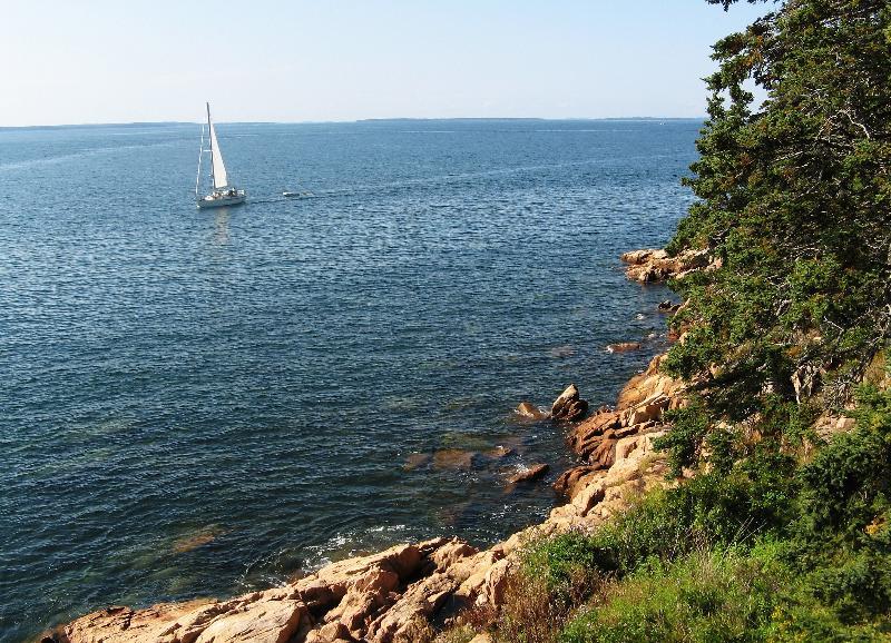 Maine Coastline with Sailboat