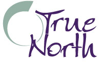 True North basic logo