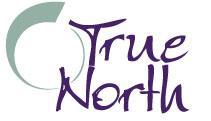 True North basic logo
