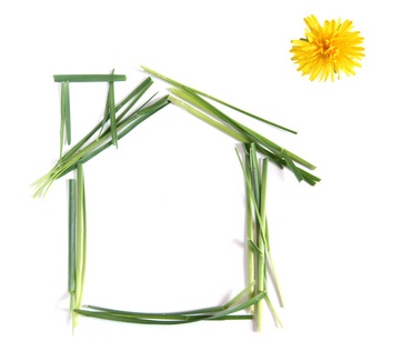 Green house with dandelion sun