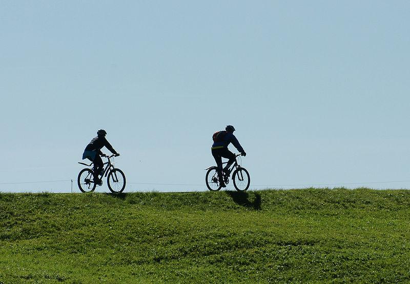biker sillhouettes