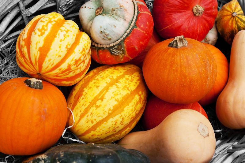 Nov 2012 Greetings Image