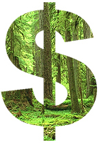 Dollar Sign with Trees