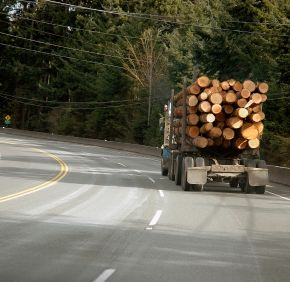 Truck Hauling Timber