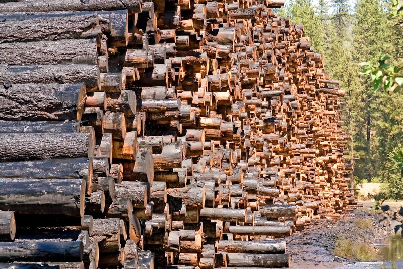 Northwest Log Stack