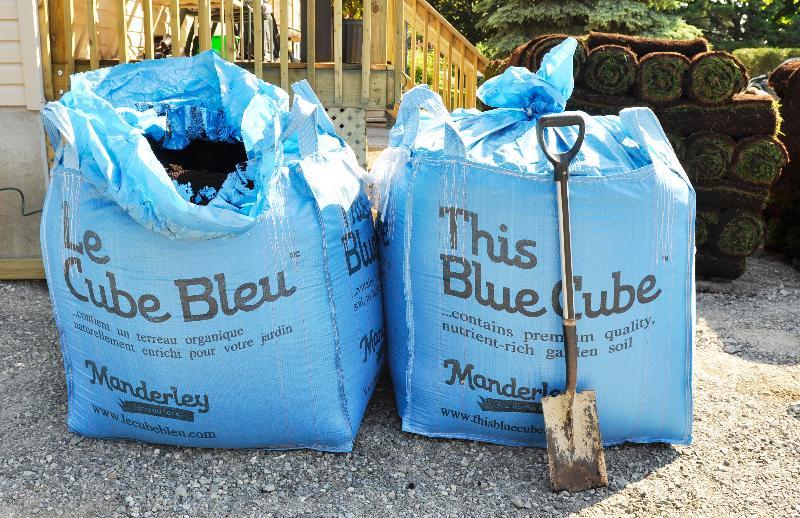 Manderley Blue Bag
