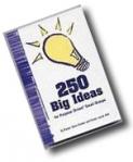 250 Big Ideas (Steve's Tips)