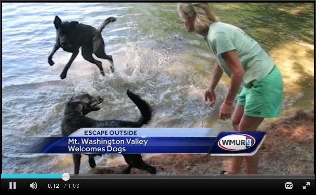 WMUR story on Dog friendly MWV.