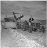 Photo: Eiichi on tractor at Heart Mountain