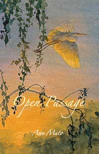 Open Passage book cover