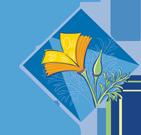 MG Logo - Transparent
