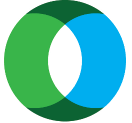 ICN Block Logo