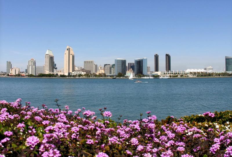 San Diego waterline