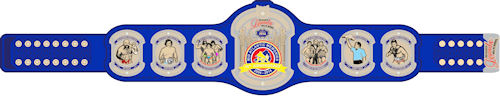 2014 Hall of Heroes Championship Belt