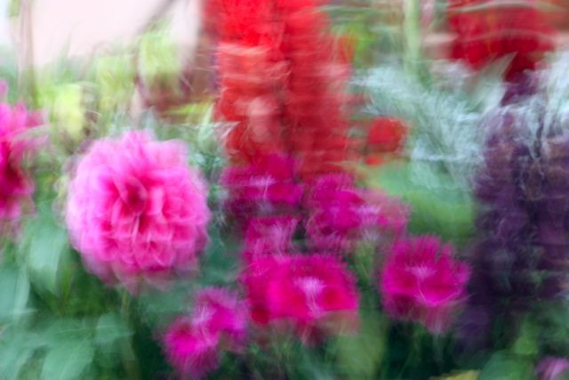 B JAffe Floral