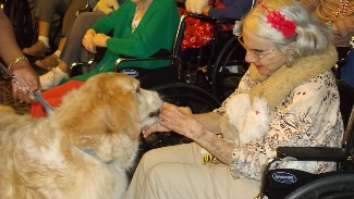 Arbrook Plaza Resident Receiving Pet Therapy