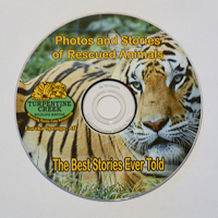Photo of BSET DVD