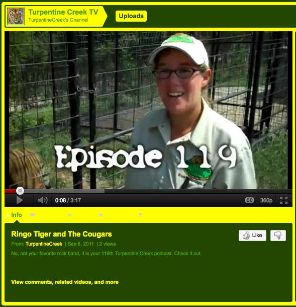 Podcast 119